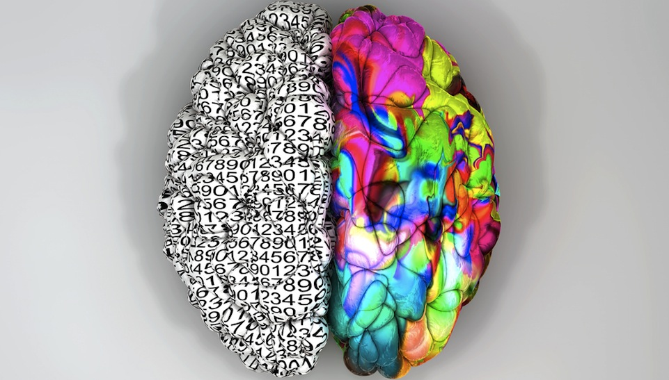 Download image Left Brain Right Thinking PC, Android, iPhone and iPad ...